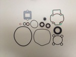 Oil seal and gask. set PUREJET - 497591
