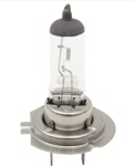 H7 Headlight Bulb