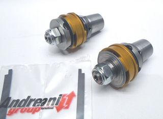 Andreani-Group-Italy-Fork-Piston-Kit-For-Sachs-2