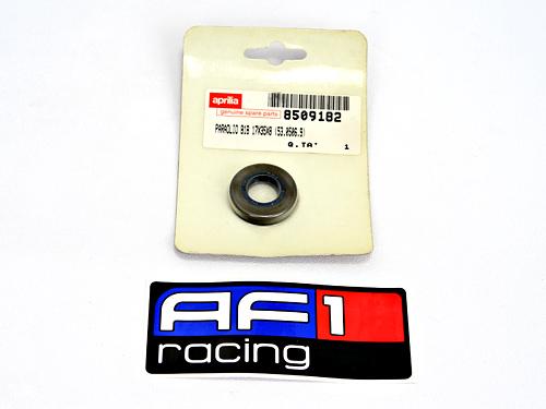 AF1 Racing Aprilia   Vespa   Piaggio   Guzzi   Norton